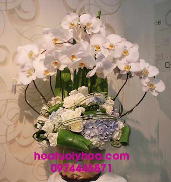 Hoa Tươi Phan Thiết - Hoa Tươi Ý Hoa